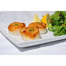 Frozen U/12 Wild Caught Scallops (2 lbs.)