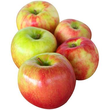 Sams Club Auto >> Honeycrisp Apple - 4 lb. - Sam's Club