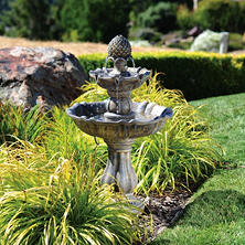 Patella Fountain