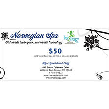 Norwegian Spa $100 Value Gift Cards - 2 x $50