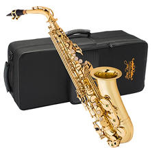 Jean Paul Alto Saxophone with Care Kit