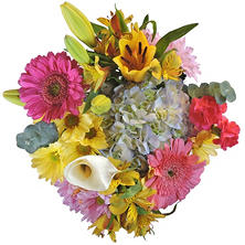 Mixed Farm Bunch, Spring (8 bunches)