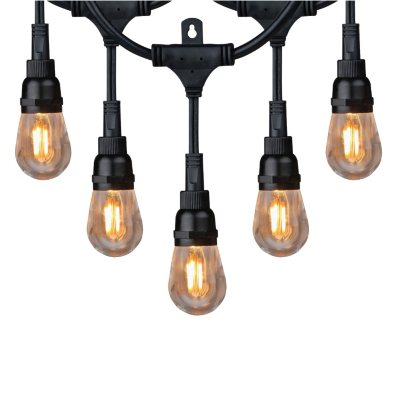 Honeywell 36' Commercial Grade LED Indoor/Outdoor String Lights - Sam's Club