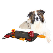"Trixie Move-2-Win Activity for Dogs, Advanced (13.5"" x 5"")"