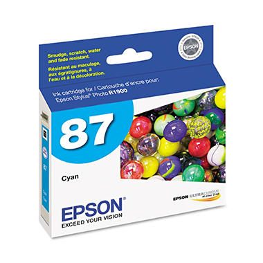 Epson T087220 UltraChrome Hi-Gloss 2 Ink, Cyan