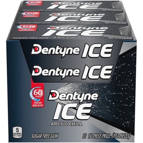 Dentyne Ice Arctic Chill Sugar Free Gum (16 ct., 12 pks.)