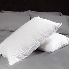 HomeLuxe Down & Feather Compartment Pillow - Various Sizes