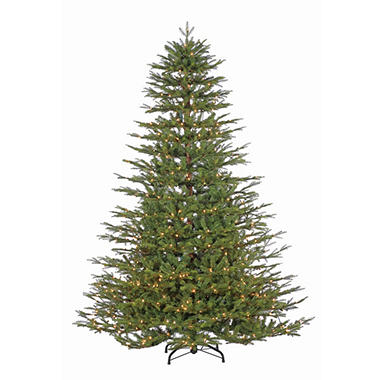 7.5' Pre-Lit Natural Cut Northwoods Spruce Christmas Tree