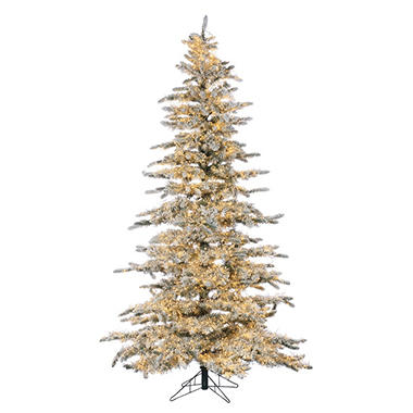 75 micro led pre lit flocked wyoming snow pine christmas tree - Led Pre Lit Christmas Trees