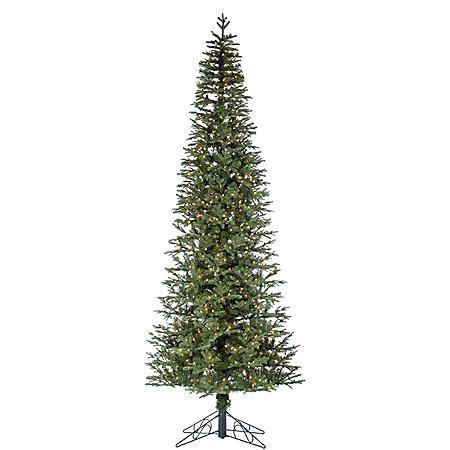12' Narrow Jackson Pine Christmas Tree