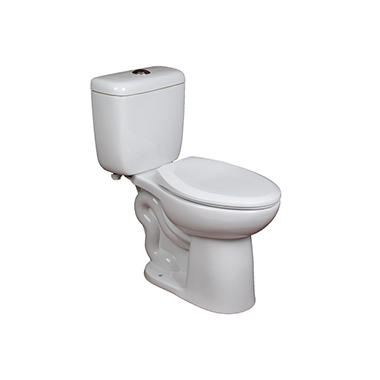 Members Mark High Efficiency Dual Flush 2 Piece Toilet