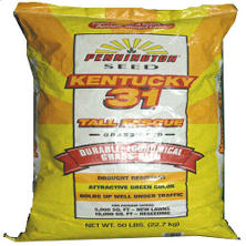 Pennington® Kentucky 31 Tall Fescue - 50 lbs.