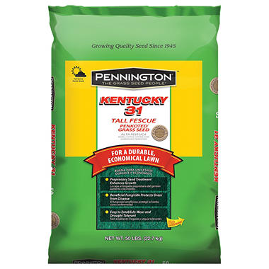 Pennington® Kentucky 31 Tall Fescue Grass Seed - 50 lbs