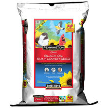 Pennington Select Black Oil Sunflower Seed Wild Bird Feed (44 lbs.)