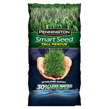 Pennington Smart Seed Grass Seed Tall Fescue, 20 lbs.