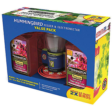 Pennington Hummingbird Feeder and Nectar Kit