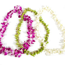 Orchid Leis - Assorted Colors (choose pack size)