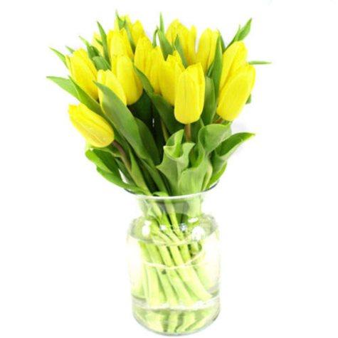 Tulips, Yellow (100 stems)