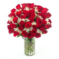 Deals on Hopelessly in Love Red Rose Bouquet (50 stems)