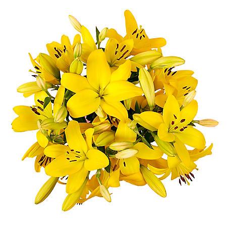 LA Lilies, Yellow (50 stems)