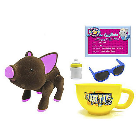 Teacup Piggy Basic Set with Sunglasses - High Tops
