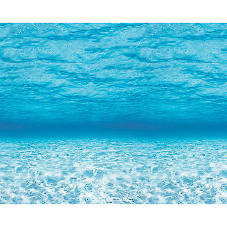 Pacon Fadeless Under the Sea Pattern Art Paper Roll, 48 Inches X 12 Feet
