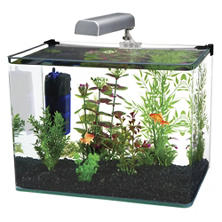 Penn Plax Water World Radius Aquarium Kit, 10-Gallon