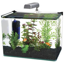 Penn Plax Water World Radius Aquarium Kit, 5-Gallon