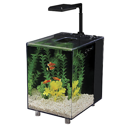 Penn Plax Prism Desktop Aquarium Kit, 2-Gallon (Black)
