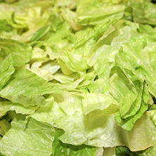 Taylor Farms Hearts of Romaine Lettuce (2 lb.)