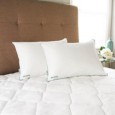 Iso-Cool Queen Pillows with Outlast Covers (2 pack)