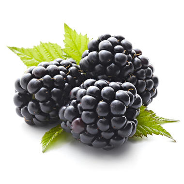 Blackberries (18 oz.)