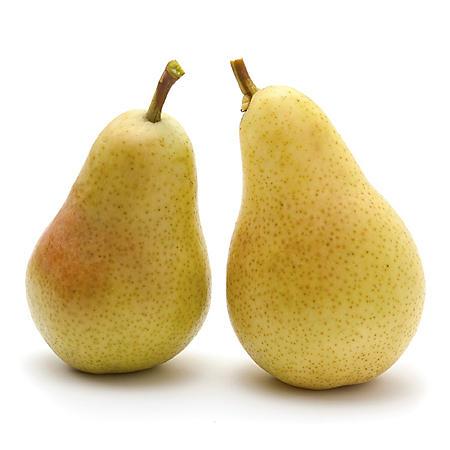 Sugar Pears - 4 lbs.