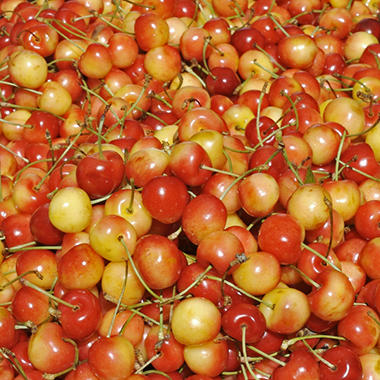 Bing Cherries DI (1lb.)