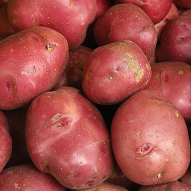 LINKED Red Potatoes (10 lbs.)