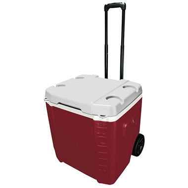 Igloo Transformer 60 Qt .Cooler, Assorted Colors