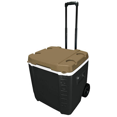 60QT TAILGATE COOLER BLACK/METALLIC GOLD