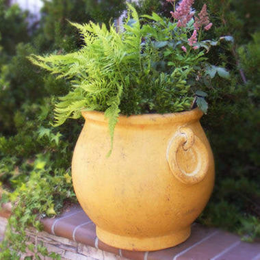 Tecate Clay Pottery Ring Planter - Ochre