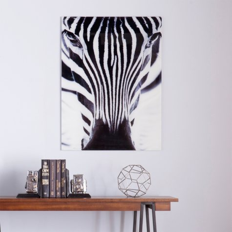 Zebra Floating Glass Wall Art