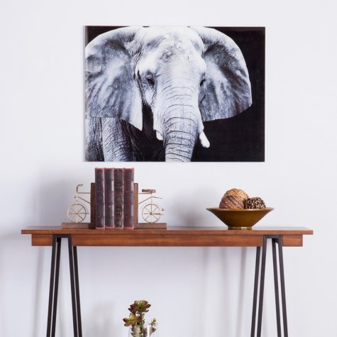 Elephant Floating Glass Wall Art