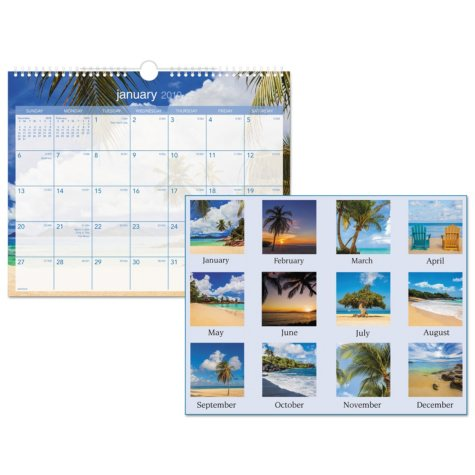 AT-A-GLANCE® Tropical Escape Wall Calendar, 15 x 12, 2019