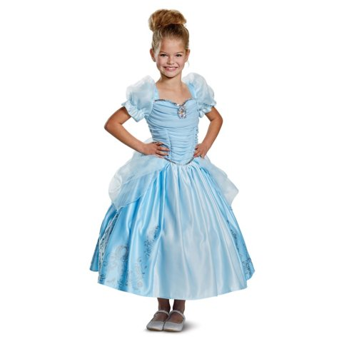 Disney Princess Gown Halloween Costume
