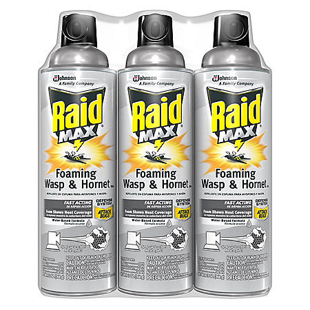 Raid Max Foaming Wasp & Hornet Killer 3 x 13 oz.