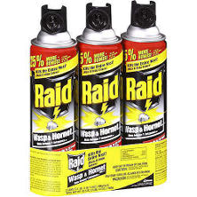 Raid ? Wasp & Hornet Killer - 3 pk./17.5 oz.