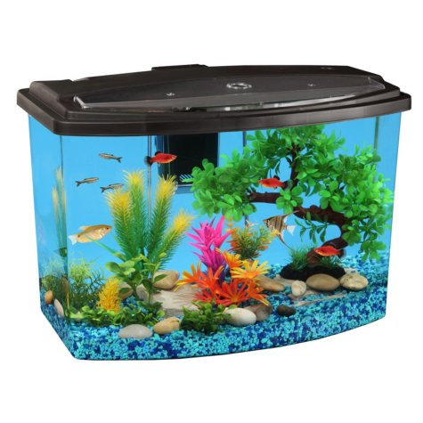 KollerCraft 7-Gallon AquScene Aquarium with LED Lights and Internal Filtration