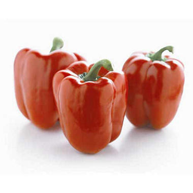 Sunset Red Bell Peppers ( 6 ct.)