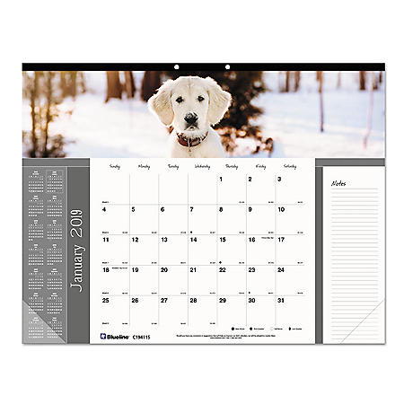 Blueline Pets Collection Monthly Desk Pad, 22 x 17, Puppies, 2020