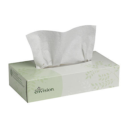 Envision Facial Tissue, 100 Tissues/Box, 30 Boxes/Case (47410)