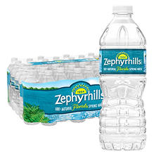 Zephyrhills 100% Natural Spring Water (16.9 oz. bottles, 40 pk.)
