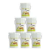 6 Pails Augason Farms Freeze-Dried Fruit Variety Kit